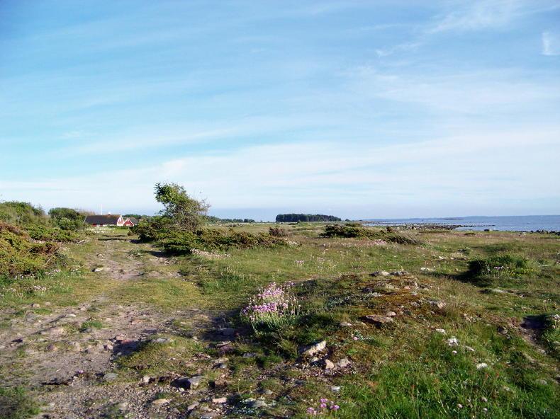 Der Skåneleden bei Ranarpsstrand