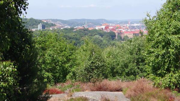 Ausblick vom Botanischen Garten