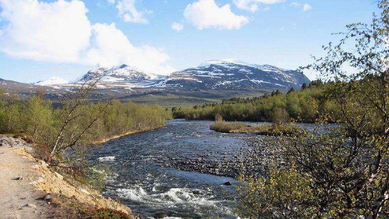 Kungsleden, die erste Etappe von Abiskojaure