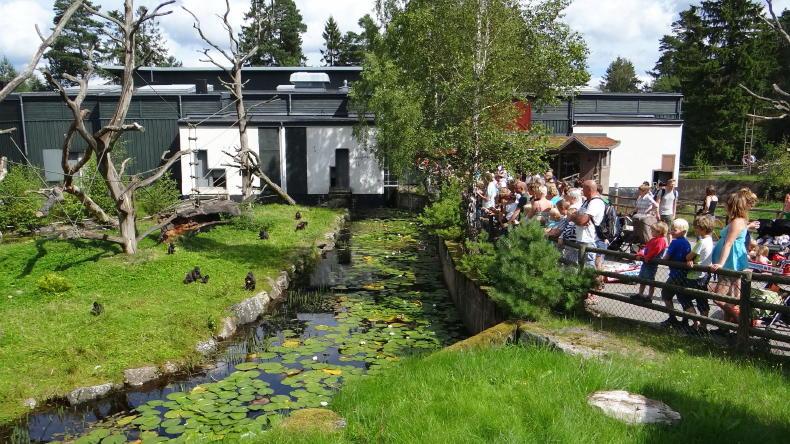 Borås Tierpark