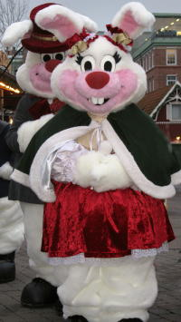 Liseberg-Kaninchen