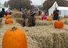 Halloween und Allerheiligen - Wann feiert man was in Schweden?