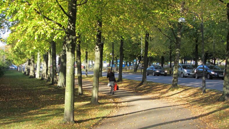 Herbst in Göteborg, Nya Allén, hinter dem Park Trädgårdsföreningen