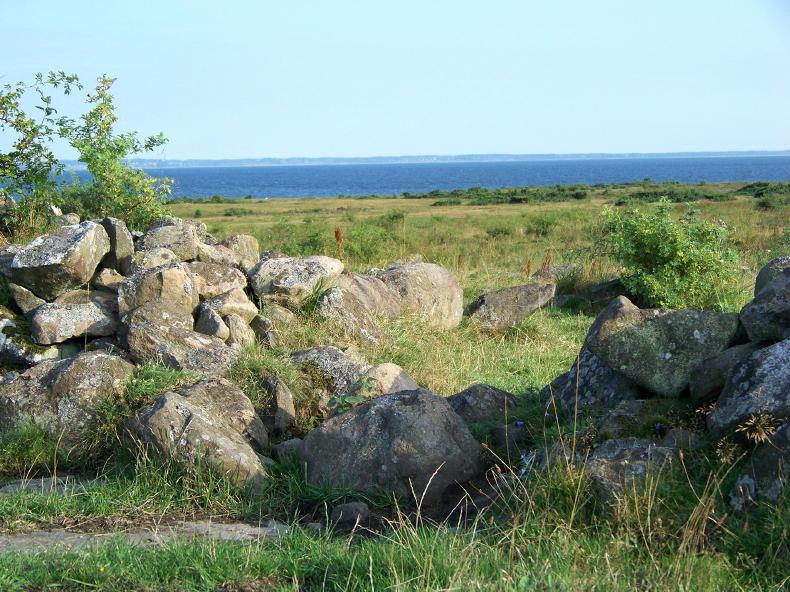 Strandwiesen bei Vasalt