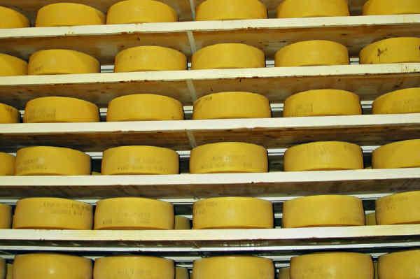 Schwedischer Käse Lagerung