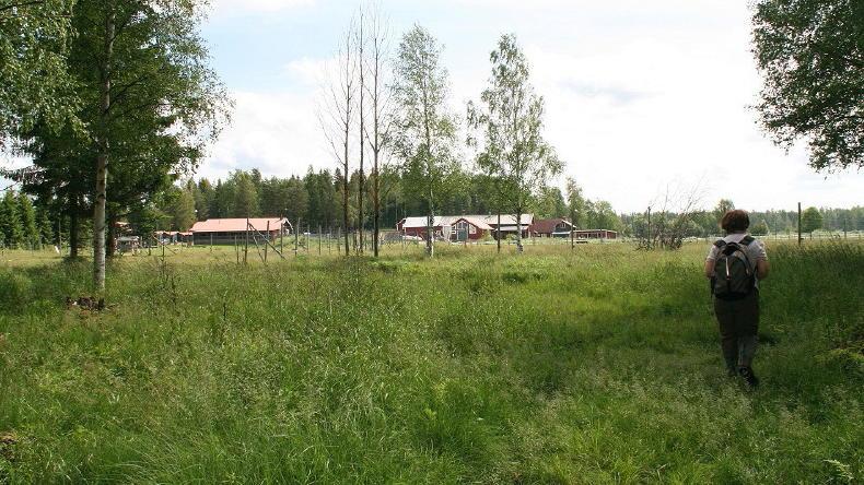 Elchpark Kybacka Gård