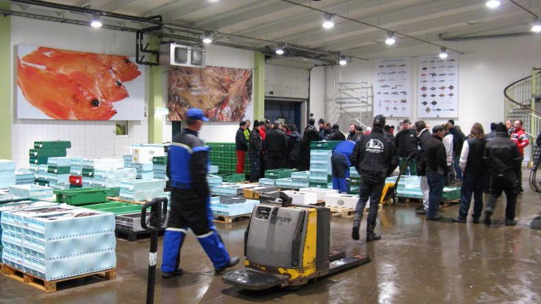 Fischauktion in Göteborg
