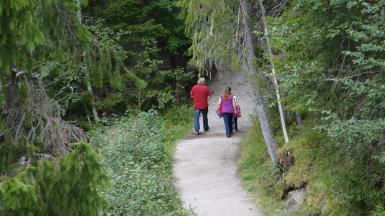 Wandern am Siljan