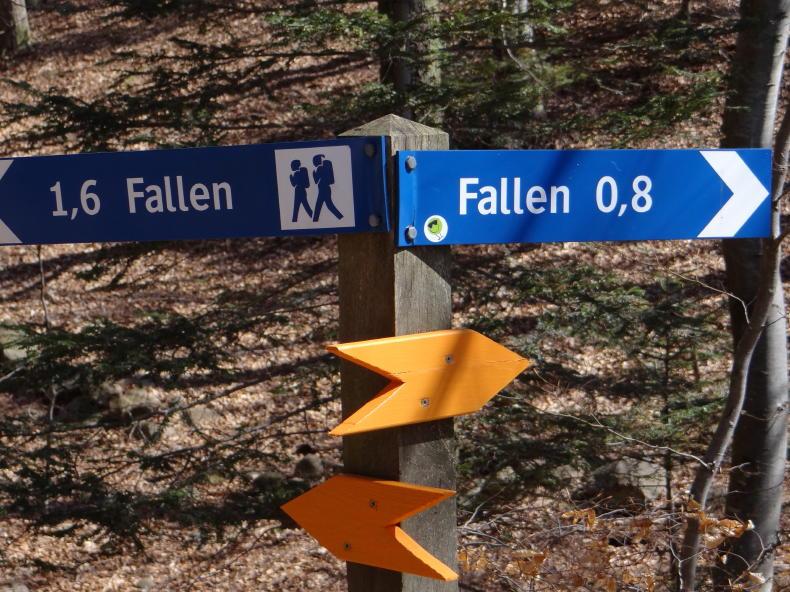 Danska Fall in Simlångsdalen