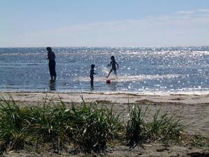 Der Strand von Björkängs Camping