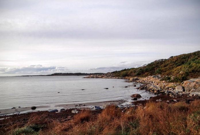 Naturschutzgebiet Särö Västerskog in Kungsbacka