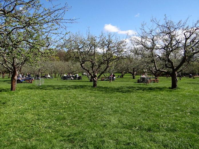 Rosendals Trädgård - Der Garten Rosendal mit Park und Schloss Rosendal