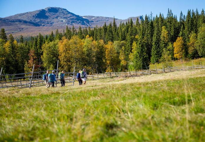 Åre Trails: Neue Angebote für Wanderer in der Bergregion von Åre, Jämtland
