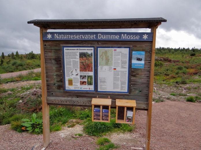 Naturreservat Dumme Mosse bei Jönköping