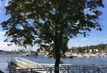 Neu: Mit dem Boot nach Waldemarsudde - Ab Nybroplan
