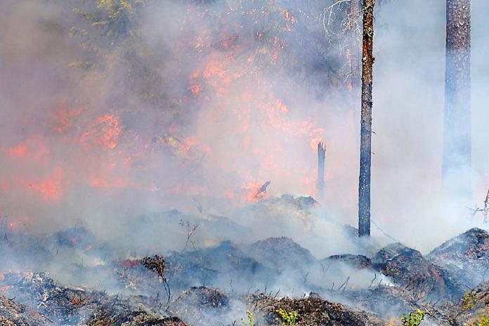 Schweden Waldbrände Karte.Infos Zu Den Waldbränden In Schweden Schwedentipps Se