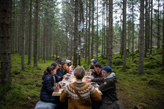 Im Sommer und im Herbst ist ganz Schweden ein großes Selbstbedienungsrestaurant