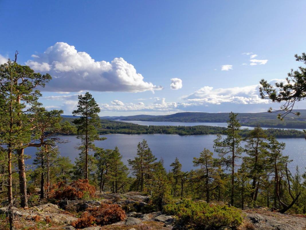 Schweden Urlaub Ohne Auto So Gehts Schwedentippsse